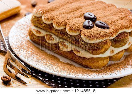 Homemade Tiramisu Dessert Close-up