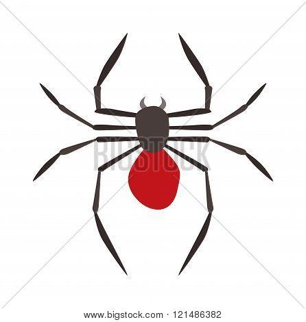 Spider illustration. Black Widow.