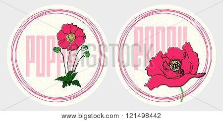 Hand drawn red poppy vintage round stickers set on textured background