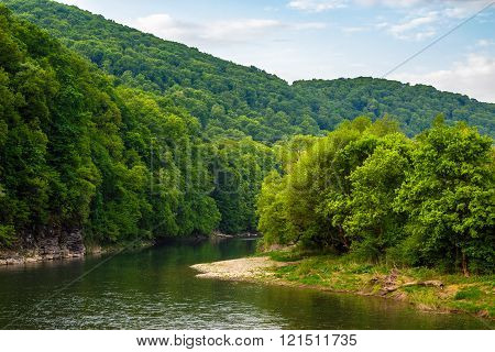 forest river with stones on shores