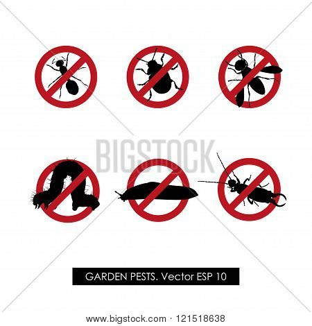 Pest control. Set of prohibition signs on white background. Vector illustration