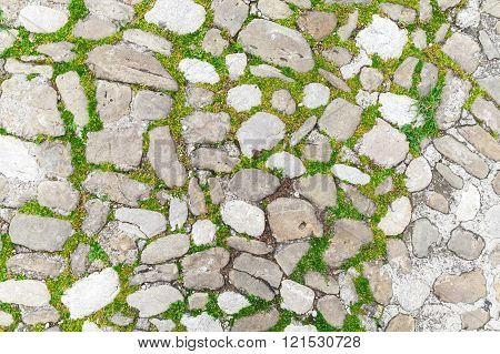 Old Stone Pavement With Green Grass, Close-up