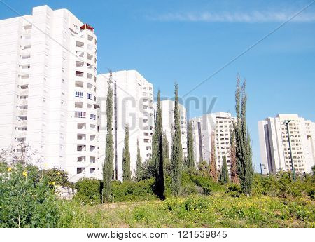 Cypress and modern white buildings in quarter Neve Rabin in Or Yehuda Israel
