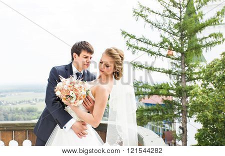 Wedding, Beautiful Romantic Bride and Groom Kissing