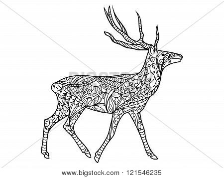 Deer coloring book for adults vector