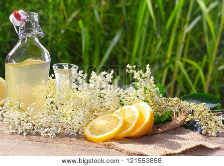 elderflower with lemon liqueur to be processed