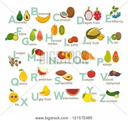 Fruits abc vector set. Exotic tropical fruits vegetable alphabet.