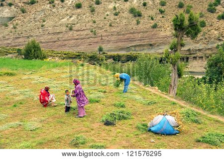 IMLIL VALLEY, MOROCCO, OCTOBER 19, 2015: Moroccan peasants working in Imlil Valley, one of the tourist destinations of Morocco, Africa