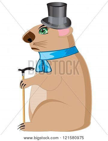 Woodchuck in hat with walking stick