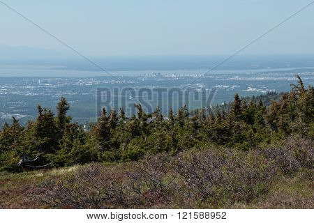 View of downtown Anchorage, Alaska from the surrounding wilderness