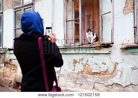 Woman Taking A Picture Of A Cat