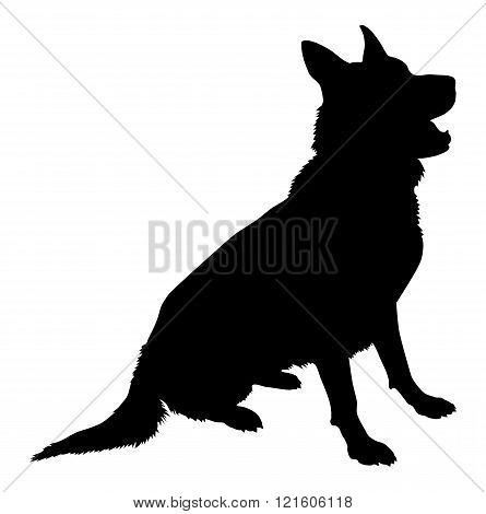 Sitting pose of a German Shepherd Silhouette