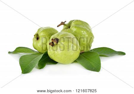 whole fresh Guava with stem leaves on white background
