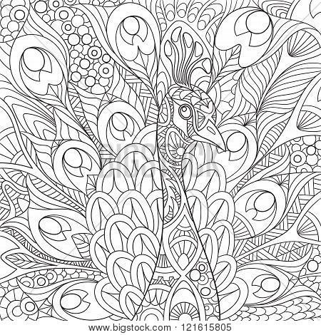 Zentangle Stylized Peacock