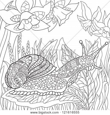 Zentangle Stylized Snail