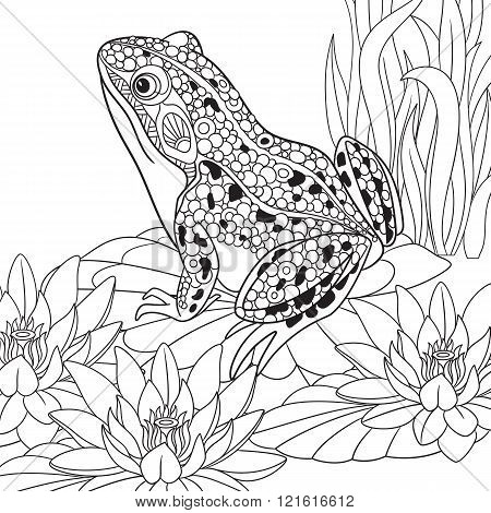 Zentangle Stylized Frog