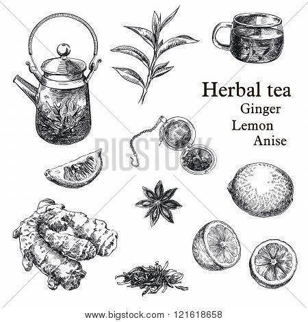 natural tea, lemon, ginger and star anise