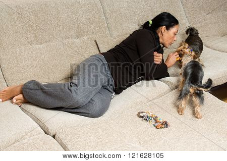 Woman - Yorkshire Terrier Owner Laying On The Sofa With Two Dogs