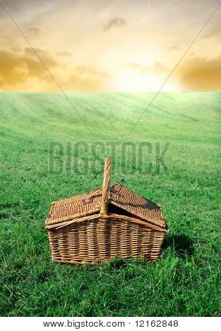 Picnic basket lying on a green meadow
