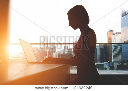 Silhouette of a young businesswoman is sitting with portable net-book in modern office interior