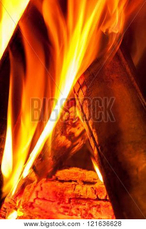 Burning Wooden Logs