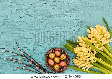 Easter background. Spring flowers willow branch and Easter eggs on blue background. Copy space top view.