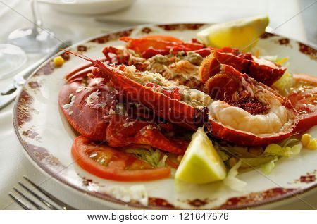 Gourmet Grilled Lobster