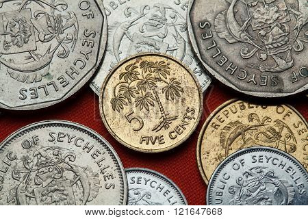 Coins of the Seychelles. Manioc plant (Manihot esculenta) depicted in the Seychellois five cents coin.