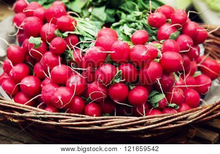 Colorful Radish In A Basket