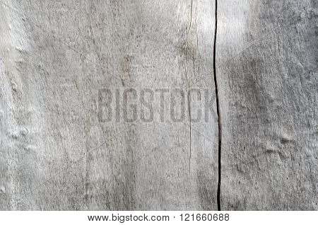 The Texture Of Old Wood Gray