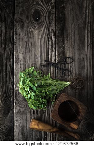 Basil, Scissors And Mortar On Old Boards