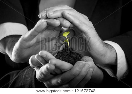 Female hands holding fertile soil from which a green sprout is growing and male hands making protective gesture above it. Conceptual of protection teamwork and business start up.