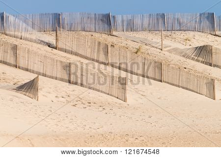 Sandy Beach And Dunes In Portugal