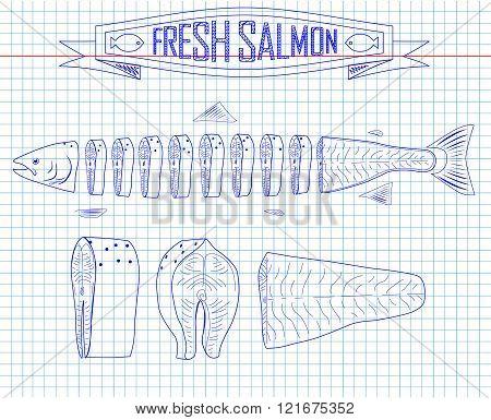 Cutting Scheme Fresh Salmon