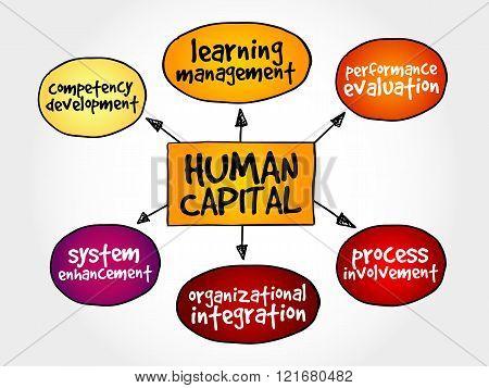Human Capital Mind Map