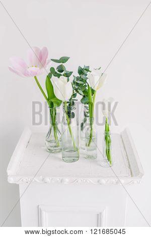 Tulips in bottles on white background studio