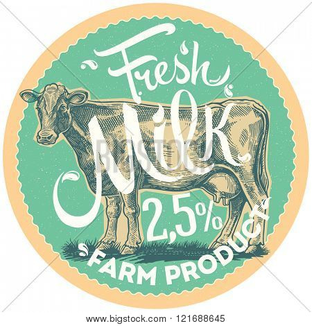Graphic cow is depicted in the style of engraving. Label design element.