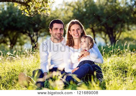 Parents holding their little son, sitting on the grass