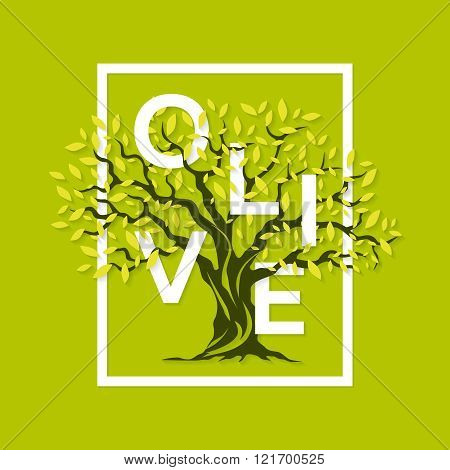 magnificent olive tree