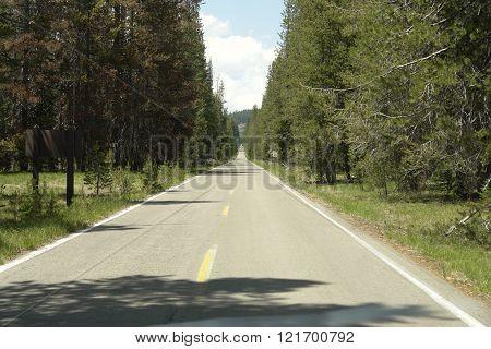 Winema National Forrest