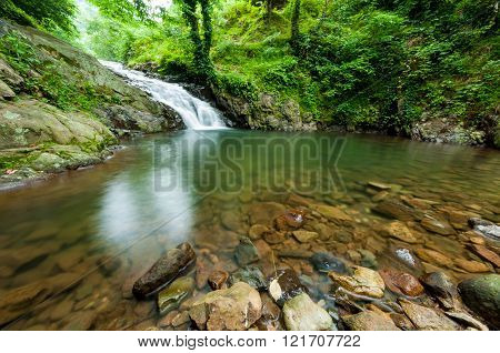 Amazing Small Waterfall In The Green Forest