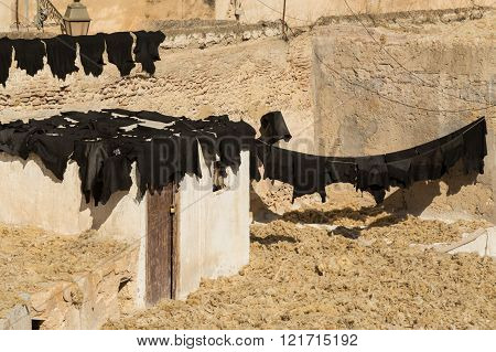 drying and curing black leather in a tannery in Fes, Morocco