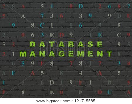 Software concept: Database Management on wall background