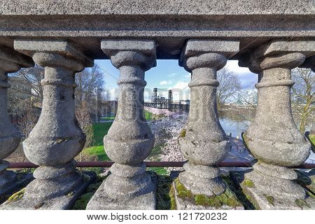 Cherry Blossom Trees Through The Stone Baluster
