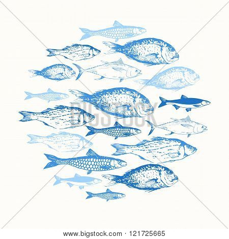 Vector illustration with sketches of fish.