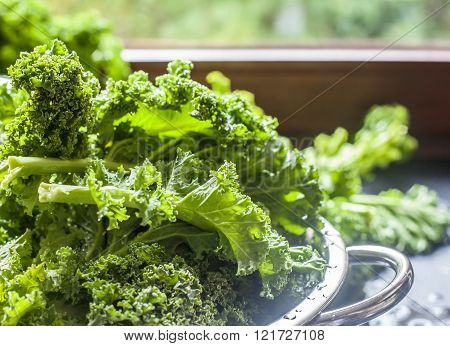 Kale in colander process window light  background