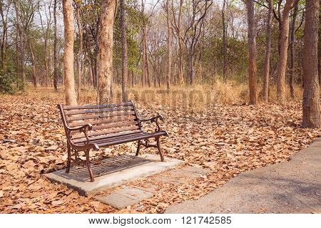 Vintage Bench At The Autumn Park In Nobody Day