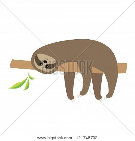 Sloth Lying On Tree Branch. Cute Cartoon Character. Wild Joungle Animal Collection. Baby Education.