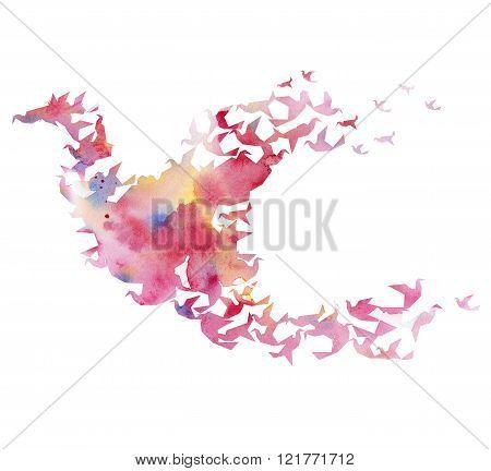 watercolor colored  bird