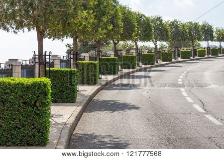 Urban Road With Cubes Of The Bushes